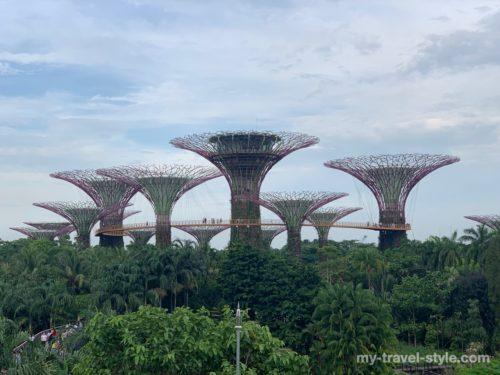 ガーデンズバイザベイの割引チケットや所要時間【シンガポール植物園】