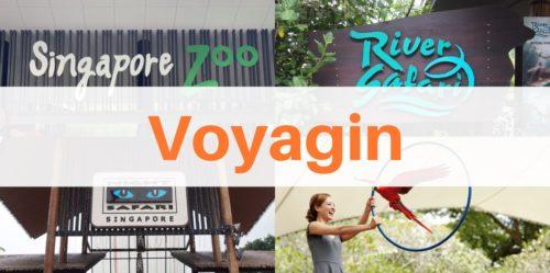 【Voyagin】シンガポール四大動物園の割引クーポンチケット予約方法