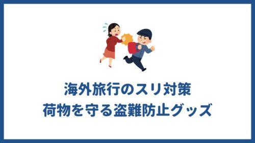 海外旅行のスリ対策!荷物を守る盗難防止グッズでスリを未然に防ごう